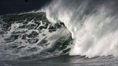 סרטי גלישת גלים - אל תתעסקו עם מאווריקס